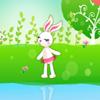 Espejo Conejo Saltar.