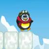 Loco Pinguino