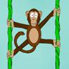 Mono de Jungla