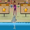 Mi Dolphin Show