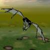 Nimian Flyer 2