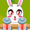Carreras de Conejos